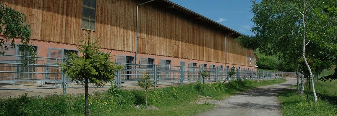 Pferdepension Buechberg